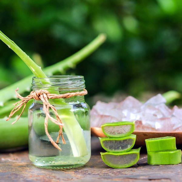cosmetice bio - aloe vera